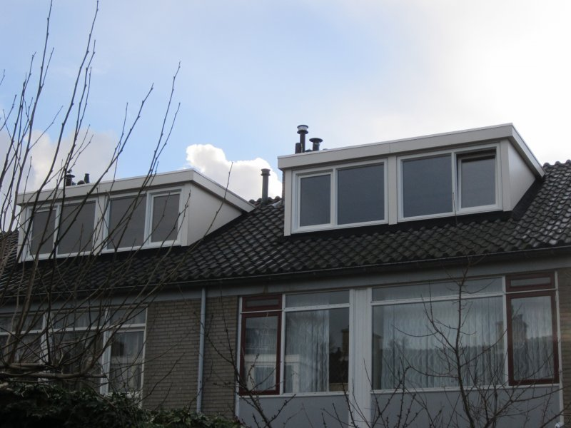 den-haag-buren-1
